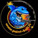www.paint-ball.lt – dažasvydžio pramogų organizavimas