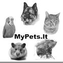 MyPets.lt – viskas apie gyvūnus