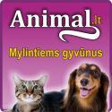 Animal.lt – mylintiems gyvūnus